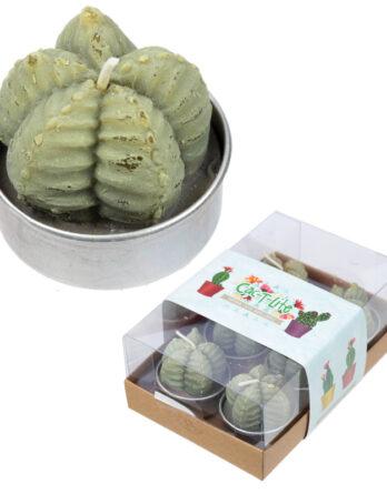 vela-cactus-original