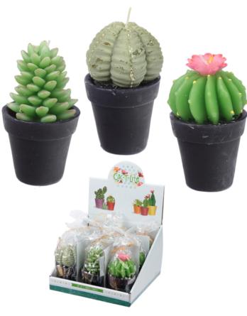 vela-cactus-boda-recuerdo